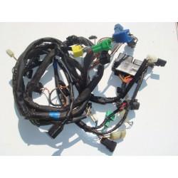 Faisceau électrique de 600 Bandit 01-04