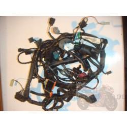 Faisceau électrique pour ER6 06-08