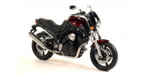BT 1100 Bulldog 2005-2006